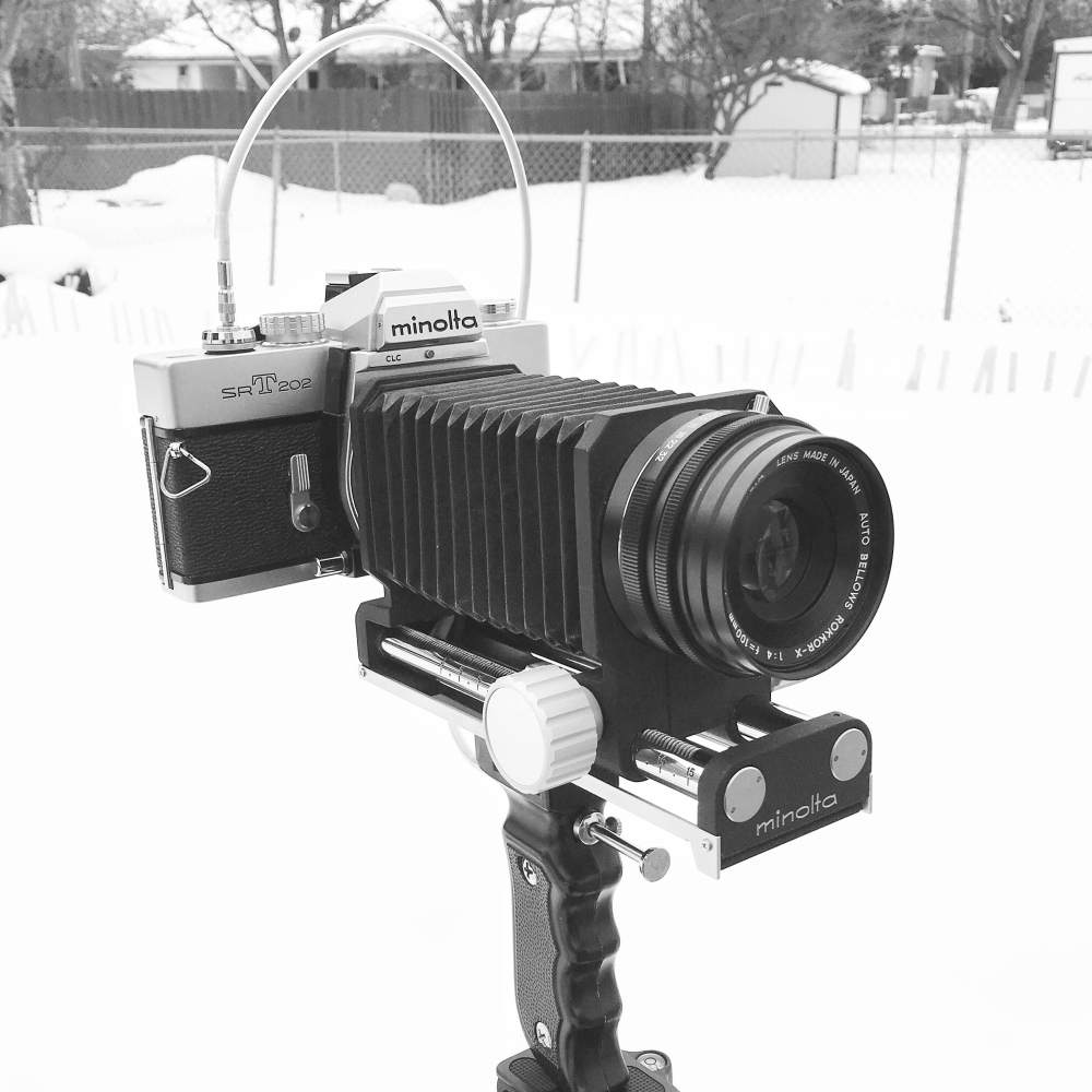 Minolta SRT-202 (1966-1981) with 100mm Rokkor-X and Auto Bellows