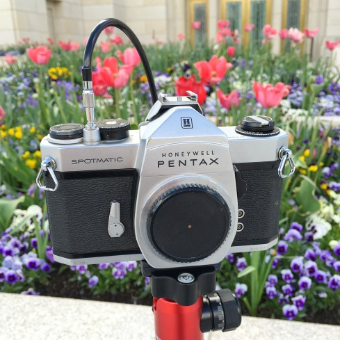 Pentax Spotmatic with f/150 45mm Pinhole Lens Cap