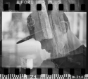 Double Exposure Roll Exchange