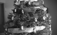 Film Christmas Tree - South Ogden, UT. Yashica Electro 35 GS (1970 - 1973). Film: Kosmo Foto 100.