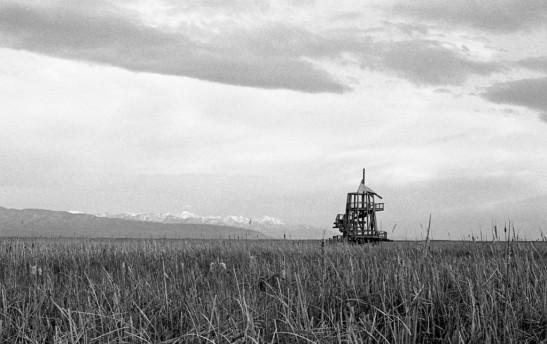 Nikon F2 Photomic (1971) - Kodak Tri-X 400 - Great Salt Lake Shorelands Preserve – Layton, Utah
