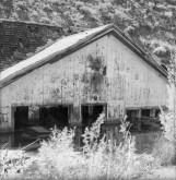 Thistle - Ghost Town, Utah