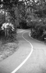 Ogden River Parkway Trail - Ogden, UT
