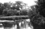 Ogden River on the Ogden River Parkway - Ogden, UT