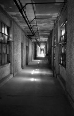 Abandoned Ellis Island Hospital - NY (Olympus XA - Kodak Tri-X 400)