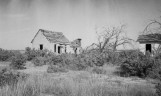 Abandoned Home - Delta, Utah